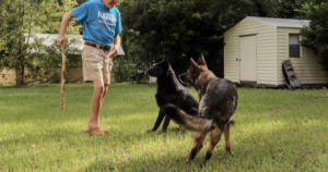 Quick-Thinking Canine Has Life-Saving Reaction To Her Dad's Stroke